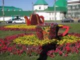 В Чебоксарах потратят на однолетние цветы больше 4 миллионов рублей