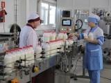 Молокозавод в Янтиково признали банкротом