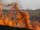 Порецком районе погибли при пожаре три человека