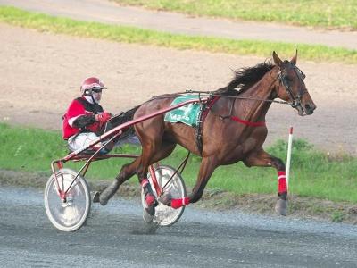 Рысак из Чувашии снова стал первым на конных бегах